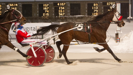 The Terry Leonard Stable's Trashytonguetalker (Casey Leonard) returns to the races Saturday night in the $10,000 Open Pace headliner. The 6-year-old won his last four starts at the winter meet. (Four Footed Photo)