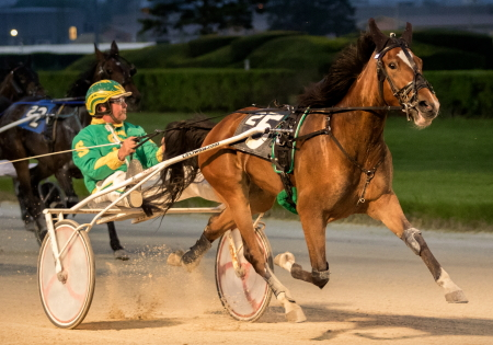 White Pants Fever (Steve Searle) shows her winning form in Friday night's Bea Farber series championship. (Four Footed Fotos)