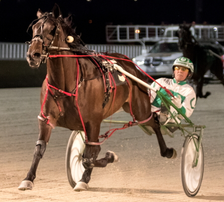 Allbeastnobeauty (Tim Curtin) was all alone at the finish of last night's first $25,700 Violet stake for ICF 3-year-old pacing fillies. (Four Footed Fotos)
