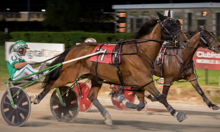 The Curt Grummel Stable's Big Lou, shown here winning the first leg of Hawthorne's Erwin F. Dygert series with Tim Curtin, will be in action Tuesday night in a 3-year-old Downstate Classic colt trot division at Carrollton. (Four Footed Fotos)