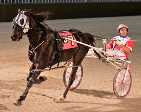 Fox Valley Gemini) Casey Leonard), the pride of the Terry Leonard Stable, looks to remain unbeaten in 13 career races in tonight's first $27,100) Cardinal stake division. (Four Footed Fotos)