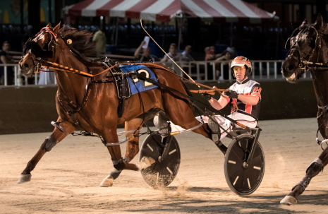 Fox Valley Hijinx, trained by his driver Kyle Husted) hopes to follow last week's Carey stake series victory with another triumph in Friday's second $27,100 Cardinal eighth race division. (Four Footed Fotos)
