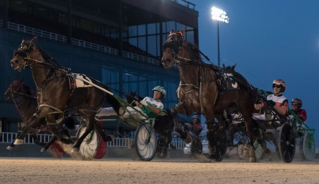 He Gone Jack (N. 3, Tim Curtin) got past Terror Of The Nite (Kyle Husted, outside) to pop at 17-1 in an Open II Pace last week, Both pacers are back in action Friday night. (Four Footed Fotos)