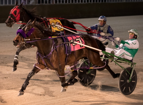 Pretty Image (Tim Curtin) is shown here winning a May start at Hawthorne in an Open III event. She goes postward tonight in another. (Four Footed Fotos