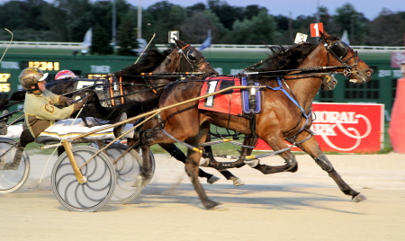 The 6-year-old ICF pacer Royale Rose, shown here winning a Hanover at Balmoral as a freshman, bows for trainer and owner Perry Smith Friday's sixth race second Open II Pace. (R.E.B. Photo)