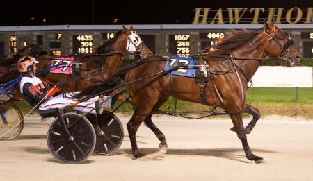 Terror Of The Nite, trained by his driver Kyle Husted, won a division of last week's Open III Paces and tonight will seek his fourth victory in six starts at the meet in the fourth race Open II division. (Four Footed Fotos)
