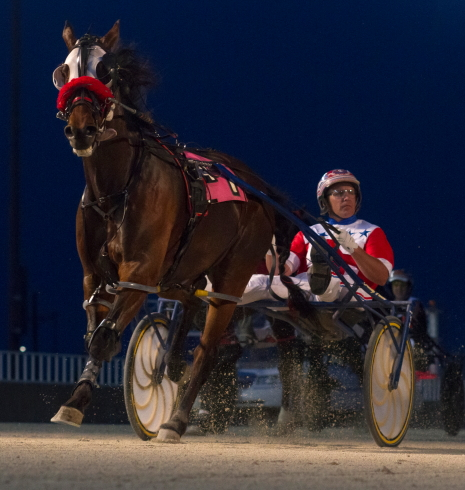 The Terry Leonard Stable's Trashytonguetalker was all alone with his driver Casey Leonard at the finish of his last Hawthorne race and that'll be the case at the start of tonight's third race Open Pace. (Four Footed Fotos)