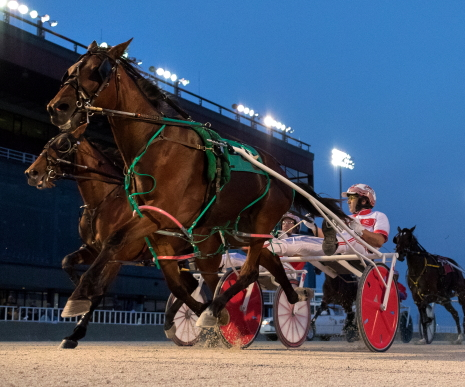 Winter Gram (Ridge Warren) looks to stay unbeaten tonight for the Tom Graham Jr. stable in the second Incredible Tillie stake division on the card. (Four Footed Fotos)