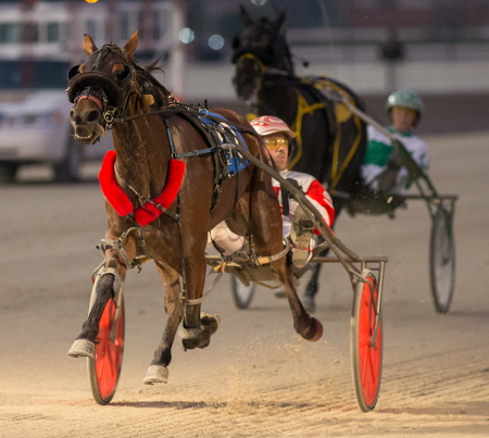 Brienne The Beauty (Travis Seekman) is the 8-5 morning line favorite in Friday night's second Incredible Tillie division for ICF 2-year-old pacing fillies after last week's imposing winning debut. (Four Footed Fotos)