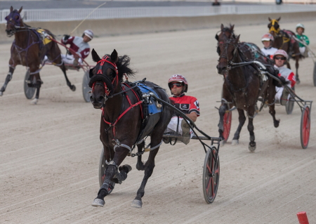 Foolishlittlegirl (Kyle Wilfong), a starter in Friday's second leg of the Incredible Tillie series showed her heels to the field in last weekend's 2-year-old filly pace prep. (Four Footed Fotos)