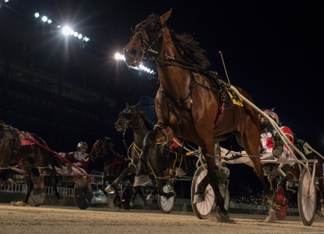 The Nelson Willis Stable's Fox Valley Halsey (No. 6, inside) proved best with driver Casey Leonard in Saturday's second Incredible Tillie series division. (Four Footed Fotos)