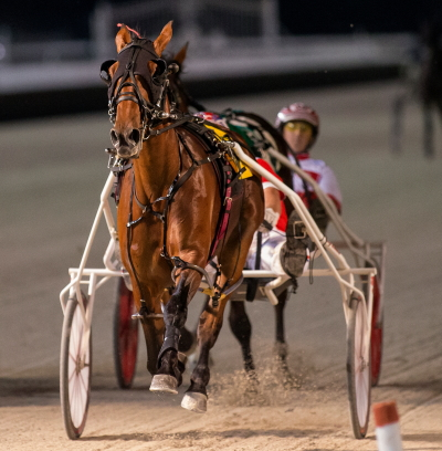 Incredible Tillie opening leg winner Fox Valley Halsey (Casey Leonard) from the barn of trainer Nelson Willis heads-up Sunday's fourth race for ICF 2-year-old pacing fillies. (Four Footed Fotos)