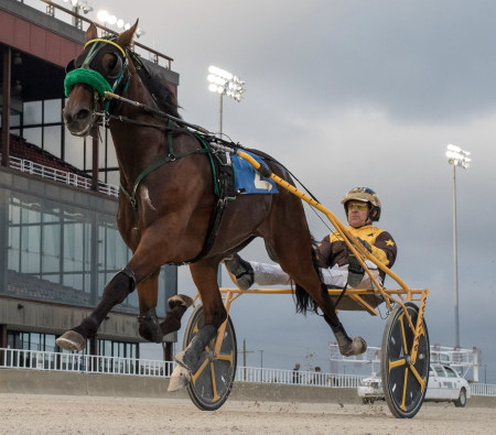 The Steve Searle stable's Louscardamon (Mike Oosting) was an easy winner in his Kadabra division Sunday, putting him currently in second place in the ICF 2-year-old male trotting division series standings. (Four Footed Fotos)