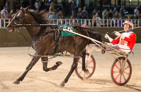 Maximus (Casey Leonard) shows his winning form in Friday night's second Incredible Finale stake series for state-bred freshman pacers. (Four Footed Fotos)