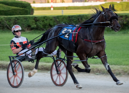 Meyer On Fire (Kyle Husted) goes for his second consecutive Incredible Finale stake series victory Saturday night in race three.(Four Footed Fotos)