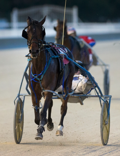 Yankee Joanie (Ryan Anderson) made it three in a row for trainer Herman Wheeler when she won Saturday's first division of the Incredible Tillie series for 2-year-old ICF pacing fillies. (Four Footed Fotos)