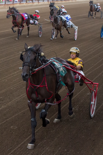 Springfield champion Allbeastnobeauty (Mike Oosting), trained by Mike Brink, looks to add Du Quoin's Director Award 3-year-old pacing filly stake Tuesday to her list of accomplishments. (Four Footed Fotos)