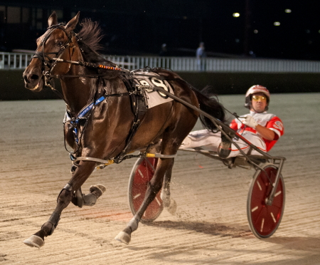 Bucklegirl Bobette and driver Travis Seekman were all alone at the finish wire in last night's $10,000 Open Pace for fillies and mares. (Four Footed Fotos)