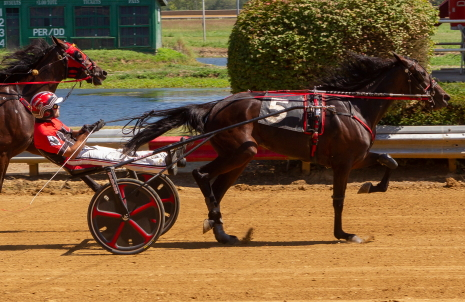 The Mike Rogers Stable's E L Game On (Kyle Wilfong) pulled off an upset victory at 7-1 odds Tuesday afternoon in the $25,000 Shawnee for freshman trotting fillies. (Four Footed Fotos)