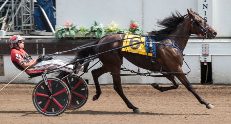 Perch (Kyle Wilfong) will have ro come from the outside nine-slot to get a repeat victory in today's 2-year-old filly pace championship. (Four Footed Fotos)