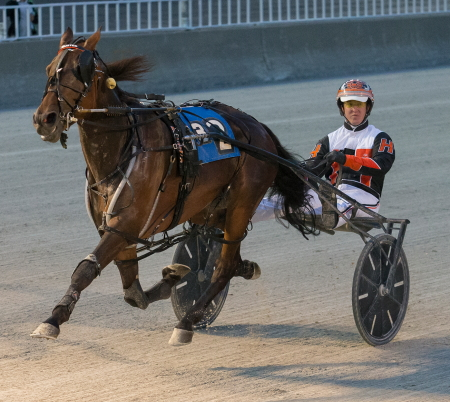 Terror Of The Nite, trained by his driver Kyle Husted), is one of the threats in Friday night's second race Open Pace. (Four Footed Fotos)