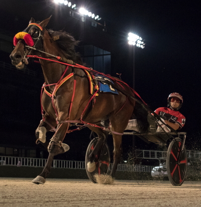Kyle Wilfong steered Tookadiveoffdipper ($11.60) to a 1:50.2 winning mile in Friday night's fifth race, the second of two $10,000 Open Pace events on the Hawthorne program. (Four Footed Fotos)