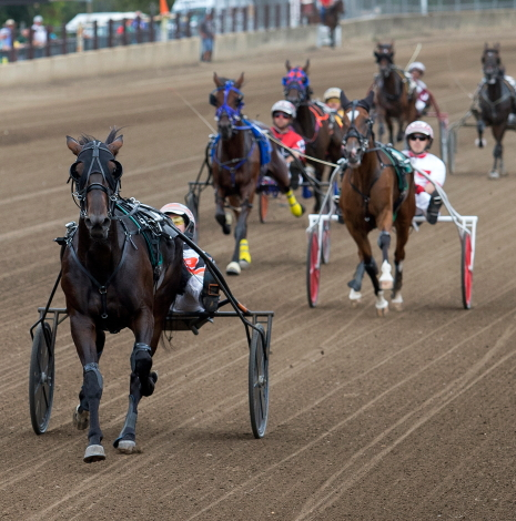The Steve Searle Stable's Trotting Grace (Kyle Husted) is headed to Du Quoin after a decisive victory in the 3-year-old trotting filly trot final at Springfield. (Four Footed Fotos)