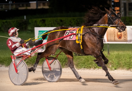 Catch driven by Juan Franco for the first time Walter White won last might's $10,000 Open Trot in 1:53.3, a time that equaled the Hawthorne track record for an aged trotter. (Four Footed Fotos)