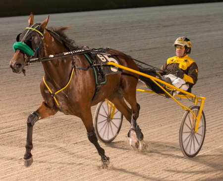 The 2-year-old ICF trotter Louscardamon (Mike Oosting) goes for his fourth consecutive victory in a division of tonight's Kadabra stake series. (Four Footed Fotos)