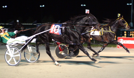Peruvian Hanover (No. 10, Tim Tetrick) followed his $210,000 American National Aged championships with another in 2004. (R.E.B. Photo)