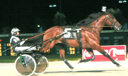 The nationally acclaimed trotter Rotation (Trevor Ritchie) didn't disappoint his many backers in the 2003 American National Aged Trot with its hefty $215,000 purse. (R.E.B. Photo)