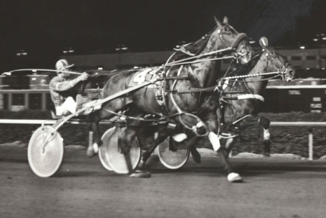 Smashing Don (No. 4) and driver Jerry Graham are shown here winning a neck decision over Why Bill in another 1977 Sportsman's Park Invite. That Friday night 15,755 attended the Cicero, Illinois facility races. (Pete Luongo Photo)