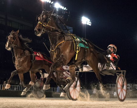 The New Americana (No. 4 right) gave driver Kyle Husted his second Night of Champions series winner Saturday night in the first Plum Peachy 3-year-old filly division for trainer Harold Guerra. (Four Footed Photo)