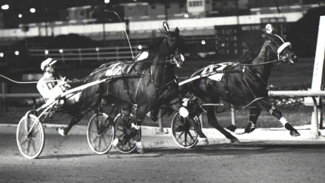 Hothead and Lavern Hostetler gave 1986 Harness Horse of the Year Forrest Skipper (inside) all he could handle in a memorable U.S. Pacing Championship at old Sportsman's Park. (Pete Luongo Photo)
