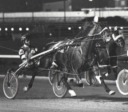 Dave Magee is shown here driving the illustrious pacer Mr. Dalrae to his 1983 American National stakes triumph at Sportsman's Park. (Pete Luongo Photo)