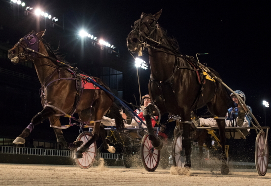 Fox Valley Torrid (left) and Valar Morghulis, the one-two finishers in last year's Incredible Tillie freshman filly championship, square off for the first time as 3-year-olds Sunday night at Hawthorne. (Four Footed Fotos)
