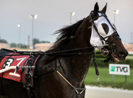 Fox Valley Gemini (Casey Leonard) came from last to first in Friday night's $12,000 Open Pace as the 4-5 betting favorite. (Four Footed Fotos)