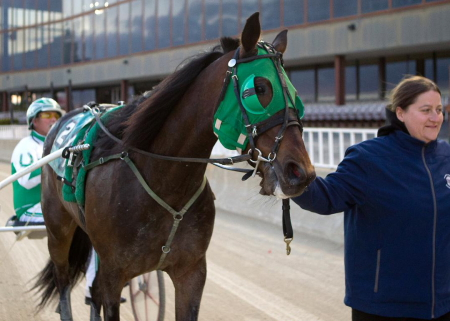 Lourhianon and driver Tim Curtin on their way to the Hawthorne winner's circle after breezing in the first leg of last night's Daryl Busse trot series. (Four Footed Fotos)