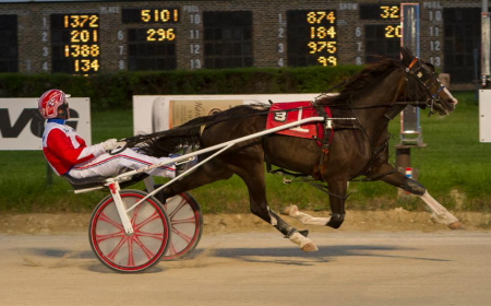 Lousraptor (Casey Leonard), an easy winner in a division of the Erwin F. Dygert series, is the favorite in Sunday night's first $21,750 Cardinal trotting stake. (Four Footed Fotos)