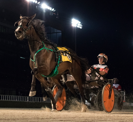 Last season's ICF Freshman Filly Trotter of the Year Louzotic (Kyle Husted) shows her winning form. She goes postward Sunday night in the first leg of the Beulah Dygert stake series. (Four Footed Fotos)