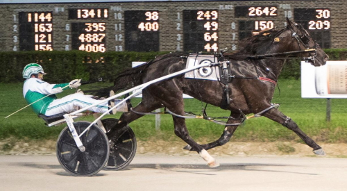Meyer On Fire (Tim Curtin) fresh off a convincing victory in last week's Robert F. Carey first series leg, goes after another stakes win in Friday's second $21,850 division of the Cardinal 3-year-old pace. (Four Footed Fotos)
