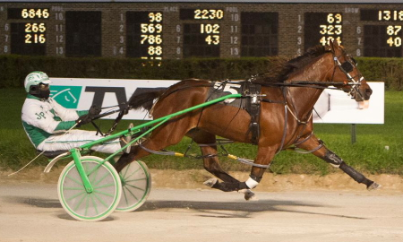 Rock Steady Ron, driven by his trainer Jamaica Patton, goes for a second straight win in Saturday's second round of the Bob Larry series. (Four Footed Fotos).