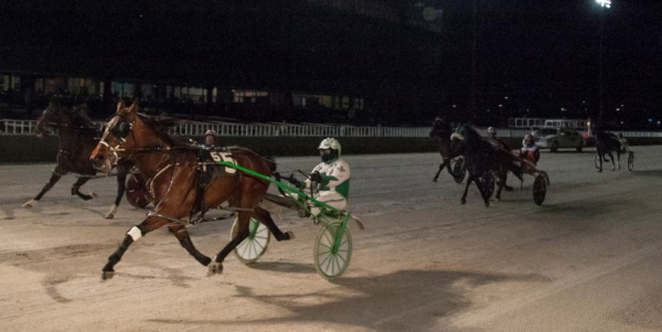 Rock Steady Ron, driven by his trainer Jamaica Patton, showed his heels to the second division field in last night's opening round of the $9,500 Bob Larry series. (Four Footed Fotos)