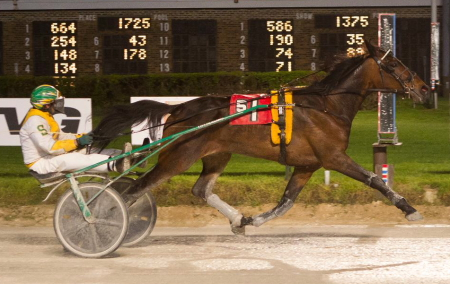 Trouble For All, trained and driven by his owner Larry Lee Smith, will bring a two-for-two record as a 3-year-old into Friday's $14,200 Daryl Busse final for trotters. (Four Footed Fotos)