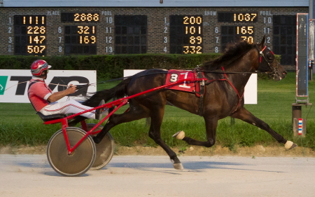 The Dennis Gardner trained 2-year-old Fitchey For Fun (Randall Finn) made a very favorable first time impression with an easy 2:01.2 victory when he debuted in a division of last Sunday's Cardinal trot. (Four Footed Fotos)