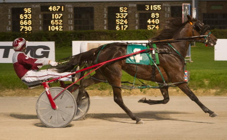 The 4-year-old Illinois pacing mare Rollin Coal (Juan Franco) has her sights set on another victory tonight in the filly and mare Open pace division for owner and trainer Hosea Williams of Chicago, Illinois. (Four Footed Fotos )