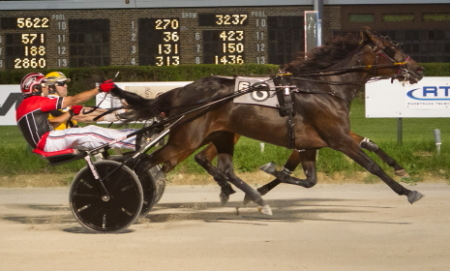 It was a scant nose that separated Anna's Lucky Star (No. 8, Kyle Wilfong) and Mandeville (inside, Robert Smolin) in last week's $12,000 Open Trot. The two talented trotters will duke-it-out again in Sunday's fourth race feature.