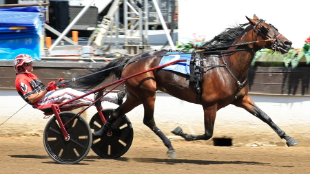 Springfield champion Anna's Lucky Star (Kyle Wilfong) has to buck the assigned 10-hole in Sunday's seven horse Open Trot. (Four Footed Fotos)