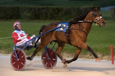 Fox Valley Quest (Casey Leonard), with six wins in seven career starts, will be the trotter to beat in next week's ISFCS two-year-old final for male trotters. (Four Footed Fotos)