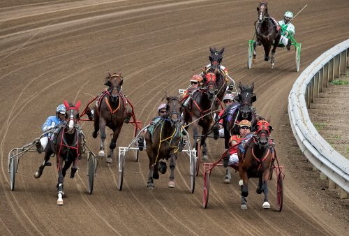 "They'll be ""spinning out of the turn"" Friday afternoon when the Springfield State Fair harness racing meet gets under way. First post is 12 noon. (Four Footed Fotos)"